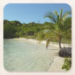 Antiguan Beach Beautiful Tropical Landscape Square Paper Coaster