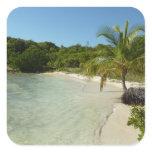 Antiguan Beach Beautiful Tropical Landscape Square Sticker