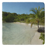 Antiguan Beach Beautiful Tropical Landscape Trivet