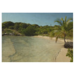 Antiguan Beach Beautiful Tropical Landscape Wood Poster