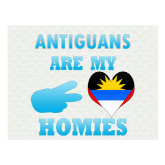 Antiguans are my Homies Postcard