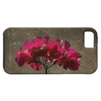 Antigüedad del Bougainvillea de BOAN iPhone 5 Carcasas