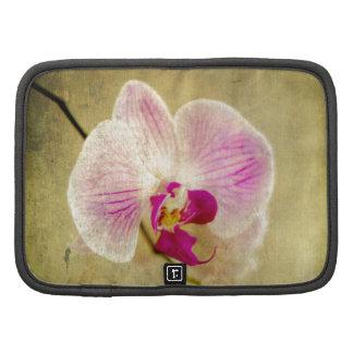 Antigüedad envejecida flor floral púrpura de la organizador