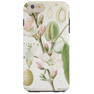 Antigüedad floral de la flor del vintage hermoso funda resistente iPhone 6 plus
