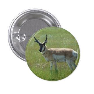 Antílope de A0036 Pronghorn Pin Redondo De 1 Pulgada