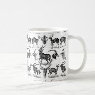 Antilopina by Ernst Haeckel Coffee Mug