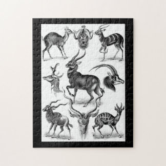 Antilopina by Ernst Haeckel Jigsaw Puzzle