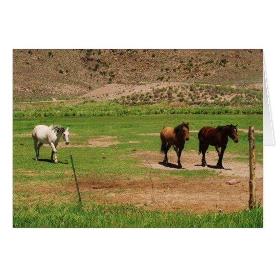 Antimony Horses Card