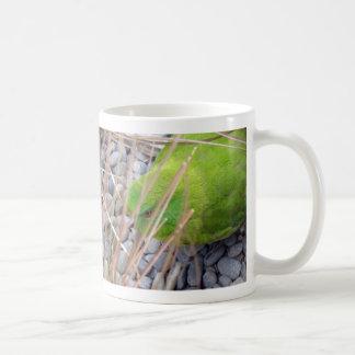 Antipodes Island Parakeet Coffee Mug