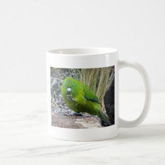 Antipodes Island Parakeet Mugs