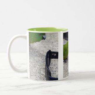 Antipodes Island Parakeet Two-Tone Coffee Mug