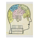 Antique 1857 phrenological head and chart poster
