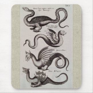 Antique 18th Century Dragon Engraving Mouse Pad