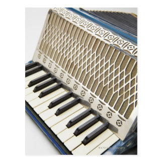 Antique Accordion Keyboard Post Card