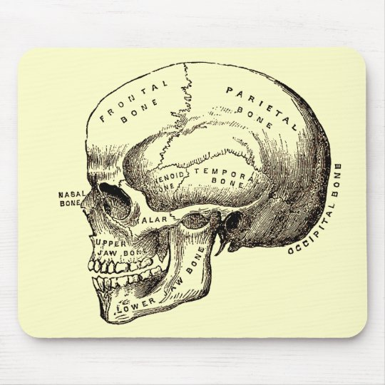 Antique Anatomy Anatomical Skull Mouse Pad