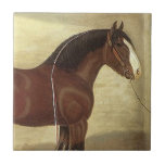"Antique Art Bay Clydesdale Draft Horse Tile Trivet<br><div class=""desc"">Vintage antique Bay Clydesdale Draft Horse art ~ ceramic accent tile for a trivet or for a gift box!  Enjoy Life &amp; Thanks For Stopping By!</div>"