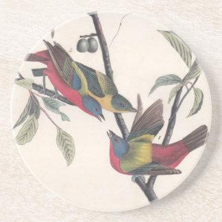 Antique Audubon Painted Bunting Beverage Coaster