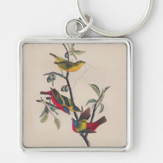 Antique Audubon Painted Bunting Bird Silver-Colored Square Keychain