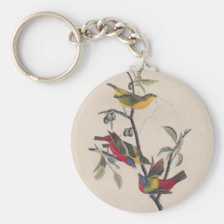 Antique Audubon Painted Bunting Bird Basic Round Button Keychain