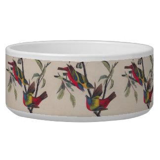 Antique Audubon Painted Bunting Bird Dog Food Bowl
