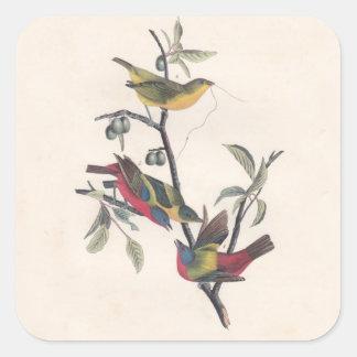 Antique Audubon Painted Bunting Square Stickers