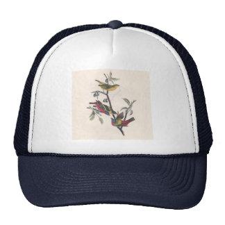 Antique Audubon Painted Bunting Trucker Hat