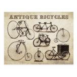 Antique Bicycles (Velocipedes) Postcard