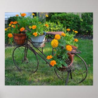 Antique Bike Flower Holder Poster