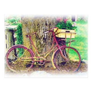 Antique Bike with Flower Basket Postcard
