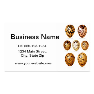Antique Bird Eggs Print no.10 Easter Spring Decor Double-Sided Standard Business Cards (Pack Of 100)