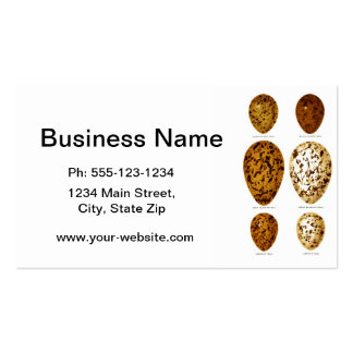 Antique Bird Eggs Print no.13 Easter Spring Decor Double-Sided Standard Business Cards (Pack Of 100)