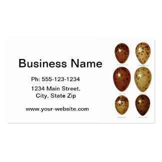 Antique Bird Eggs Print no.14 Easter Spring Decor Double-Sided Standard Business Cards (Pack Of 100)