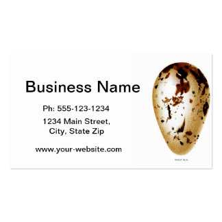 Antique Bird Eggs Print no.6 Easter Spring Decor Double-Sided Standard Business Cards (Pack Of 100)