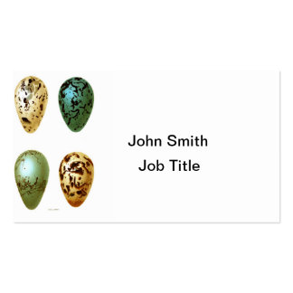 Antique Bird Eggs Print no.8 Easter Spring Decor Double-Sided Standard Business Cards (Pack Of 100)
