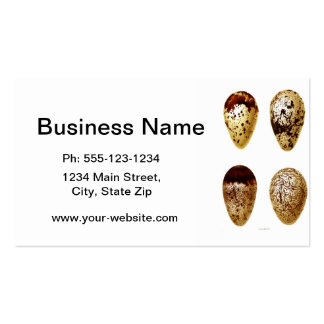 Antique Bird Eggs Print no.9 Easter Spring Decor Double-Sided Standard Business Cards (Pack Of 100)
