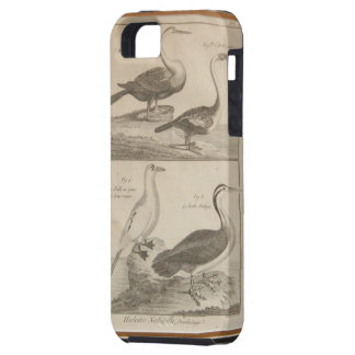 antique bird engraving iPhone SE/5/5s case