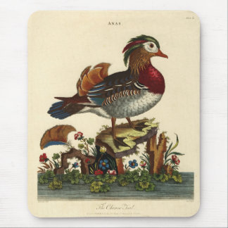 antique bird engraving mouse pads