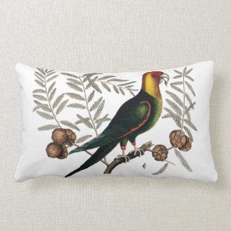 Antique bird illustration cushion