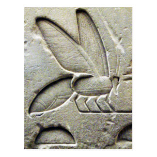 ANTIQUE BLACK WHITE  EGYPTIAN HONEY BEE BEEKEEPER POSTCARD