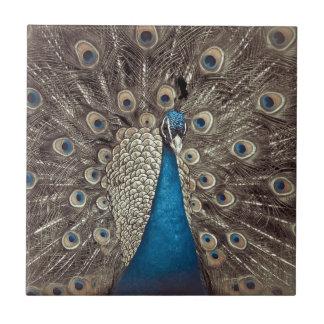 Antique Blue Peacock Ceramic Tiles