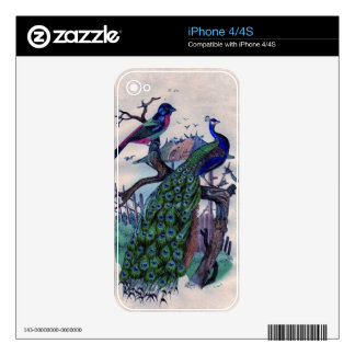 Antique Blue Peacock Natural Hisotry Print Skin For The iPhone 4