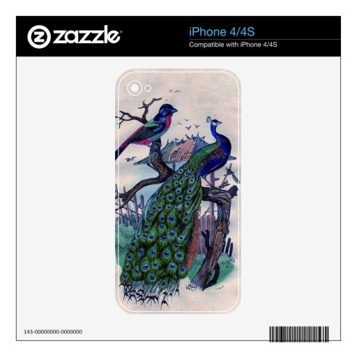 Antique Blue Peacock Natural Hisotry Print Decal For iPhone 4