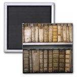 Antique Books 17th Century Vellum Bindings Fridge Magnet