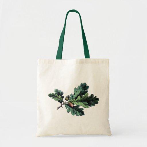 Antique Botanical Print Oak Leaves & Acorns Canvas Bag