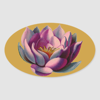 Antique Botanicals Pink Water Lily Lotus Oval Sticker