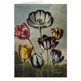 Antique botanicals tulips on notecards stationery note card