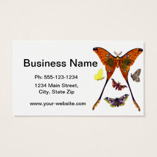 Antique Butterfly Natural History Print no.9 Business Card