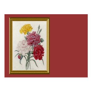 Antique Carnations In A Golden Frame Postcard