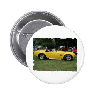 antique classic car show pic raw 016 button