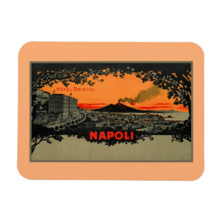 Antique color litho Hotel Bristol Naples Napoli Rectangular Photo Magnet